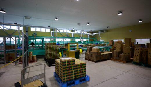 食品汚染を招いてしまう原材料のNG保管方法をご紹介!
